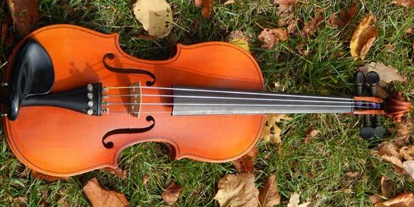 Corso violino country-folk a Busto Arsizio